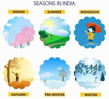 learning seasons for preschoolers