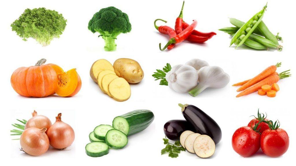 vegetable name learning for kindergarten